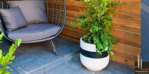 Diy Balcony And Courtyard Garden  Bunnings Warehouse. Patio Furniture Covers Mpls. Outdoor Furniture Pier One Imports. Where To Buy Cheap Outdoor Furniture. Outdoor Furniture Manufacturers Thailand. Wooden Patio Swing Australia. Outdoor Furniture Tampa Bay. Zenders Patio Furniture. Patio Dining Set Manufacturers
