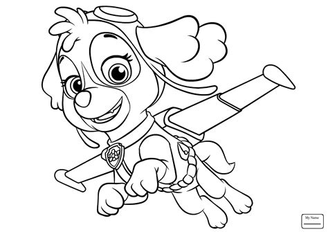 Paw Patrol Coloring Book Skye And Everest Pages Youtube