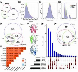 Analysis Of An A  Thaliana Leaf Proteome Digested With