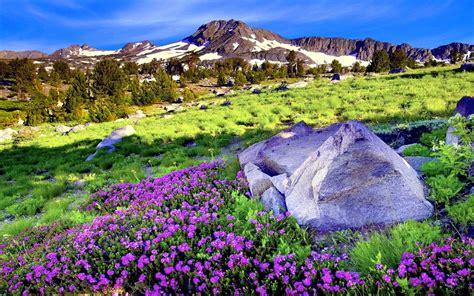 arri 232 re plan de bureau gratuit printemps 28 images fonds d 233 cran paysages page 2 sur 4