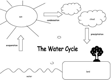 diagrams   water cycle  printable diagram