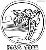 Palm Coloring Tree Pages Printable Pretty Palmtree Colorings Heaven Birijus sketch template