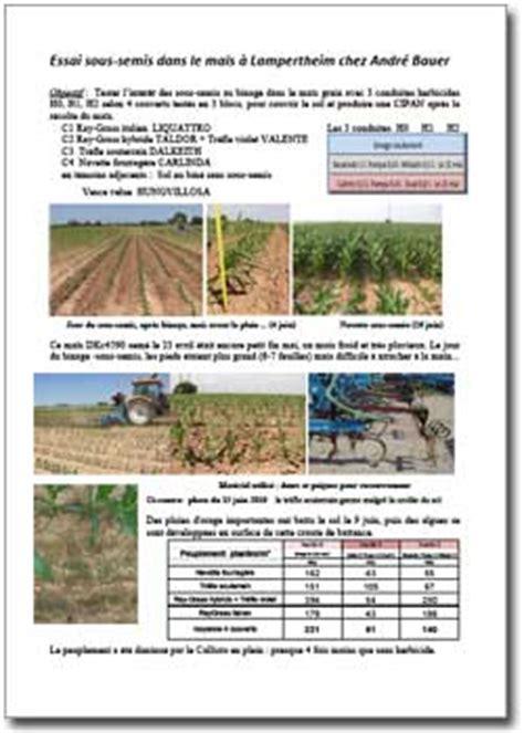chambre d agriculture du bas rhin essai de sous semis dans le maïs de lertheim a2c le