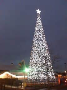 britains biggest christmas tree flickr photo sharing