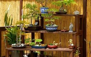 gartengestaltung mit bonsai gartenkunst im japanischen stil With garten planen mit bonsai display