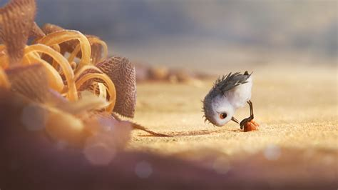 Up Animated Wallpaper - wallpaper piper bird pixar 11284