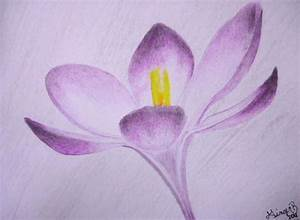Purple Flower Drawing by G Marie