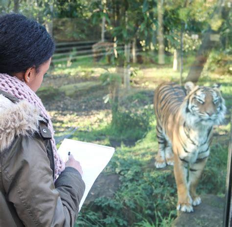 msci wild animal biology msci wild animal biology