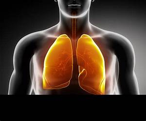 Early Stage Lung Cancer Overview