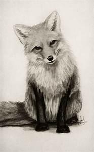 Best 25+ Animal drawings ideas on Pinterest | Pencil art ...