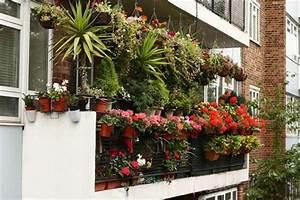 Balkon Wand Verschönern : balkon bepflanzen praktische tipps und wichtige hinweise ~ Indierocktalk.com Haus und Dekorationen