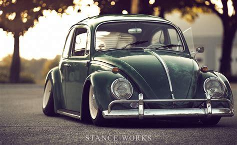 beetle type  dakos