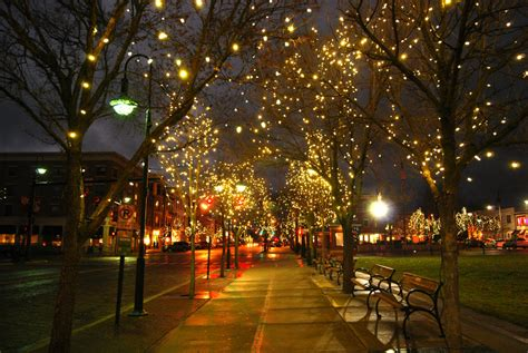 twinkle lights photography