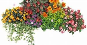 Blumenkästen Bepflanzen Ideen : balkon ideen balkonk sten bepflanzen dreimal anders strandcocktail mit pflanzen in rot ~ Eleganceandgraceweddings.com Haus und Dekorationen