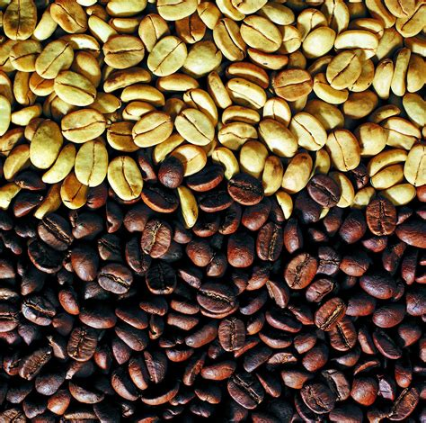 When the phrase best costa rican coffee is mentioned, one automatically thinks of great quality and strong flavor in a coffee. Costa Rican coffee beans: raw and roasted. One thing you will really enjoy in Costa Rica is the ...