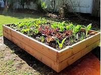 raised vegetable garden How to Build a Raised Vegetable Garden Box @ Wolverine ...