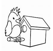 Parrot Bird House Coloring Pages  Best Place To Color