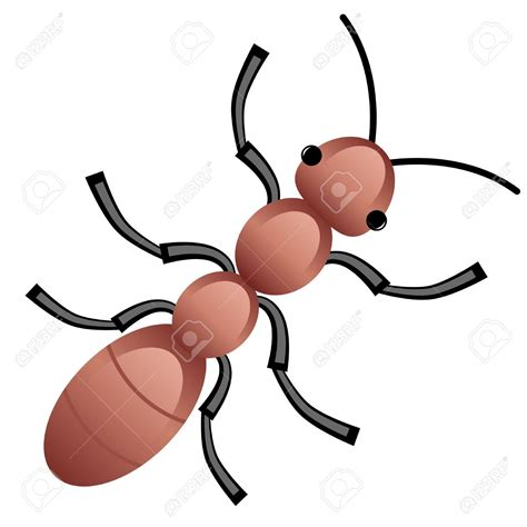 Ant Clipart An Ant Illustration Of An Ant On A Clipart