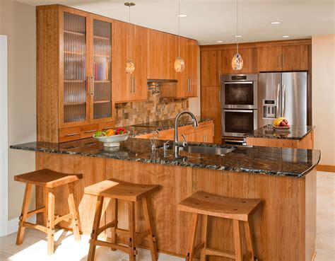 Contemporary Kitchens Designs & Remodeling