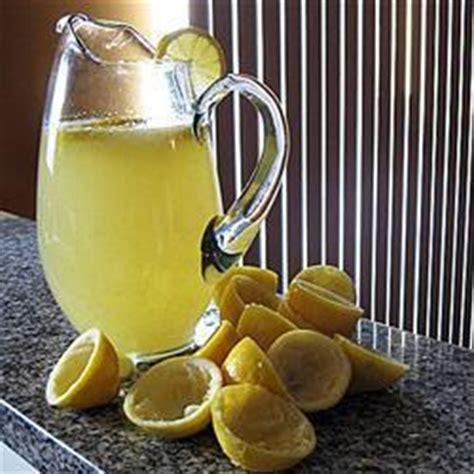 selbstgemachte limonade rezepte suchen