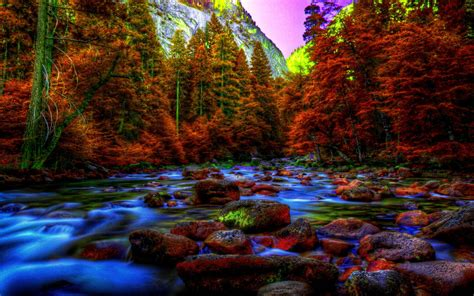 Fall Desktop Backgrounds Hd by 3d Fall Wallpapers Wallpaper Cave
