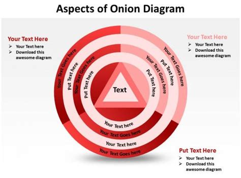 aspects  onion diagram shown  concentric circles  triangle powerpoint templates