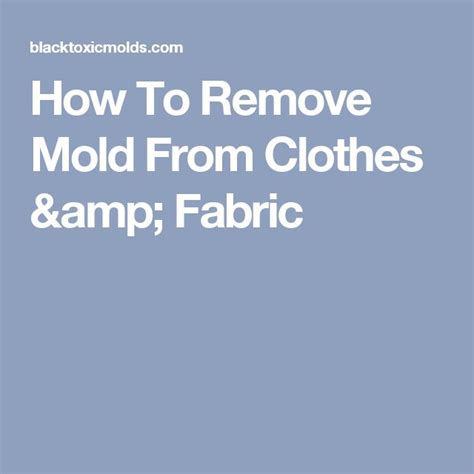 1000 ideas about remove mold stains on remove