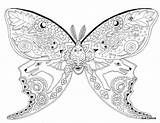 Coloring Sue Butterfly Printable Moth Coccia Luna Adults Colouring Pattern Butterflies Blank Animal Google Getcolorings Malen Adult раскраски выбрать доску sketch template