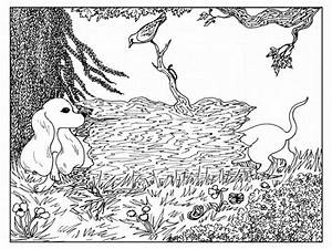 Advanced Coloring Pages Of Animals Coloring Home