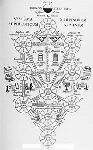 Tree Of Life  Metatronic Version