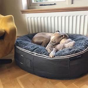Large, Pet, Bed