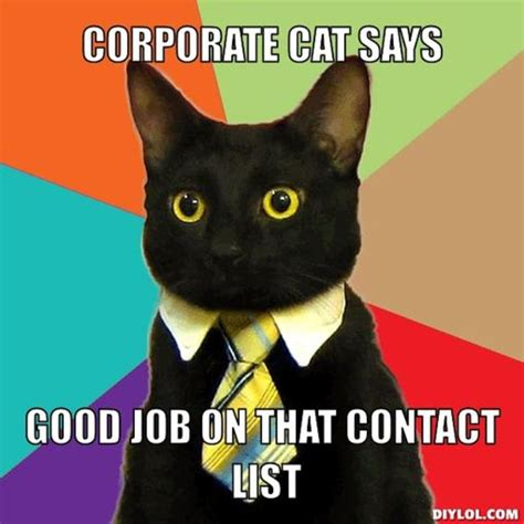 Meme Business Cat - 16 ways to network like a boss huffpost