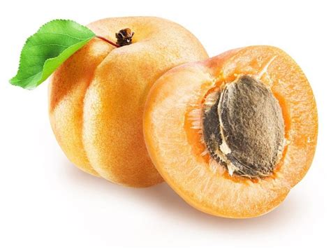 Laetrile from apricot seeds: the cancer cure suppressed by ...