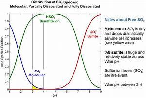 Metabisulfite  Sulfur Dioxide  In Beer Brewing