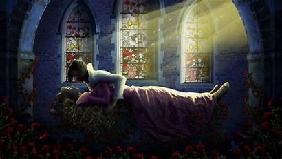 Sleeping Princess Beauty Disney Fantasy Prince Kiss