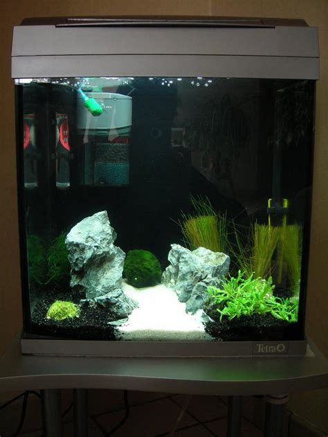 bulles do mon aquarium 30 l tetra aquaart fa 231 on aquascape