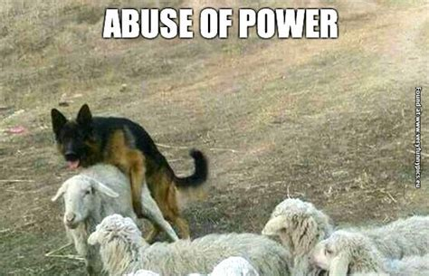 German Sheperd abuse's his powers   Very Funny Pics