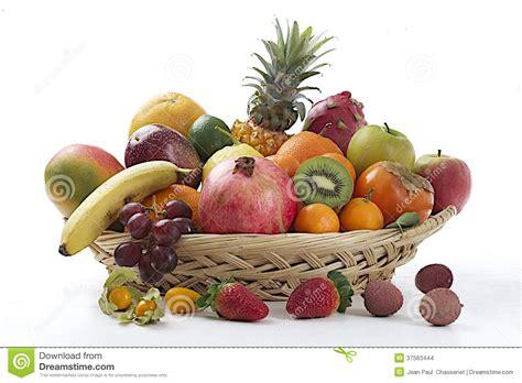 panier des fruits exotiques photo stock image du raisins abricots 37563444