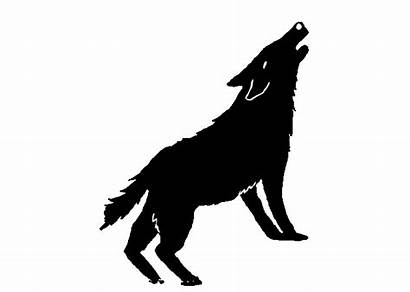 Wolf Howling Clipart Earthjustice Moving Transparent Mexican