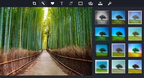 Online Photo Editor  Pizap  Free Photo Editor & Collage