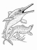 Coloring Pages Plesiosaur Dinosaurs Ichthyosaur Animals Colorkid sketch template