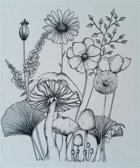 wild flowers ink sketch   flower sketches ink