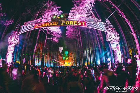 Elã Ctric by Electric Forest To Showcase Fast Rising Michigan Acts