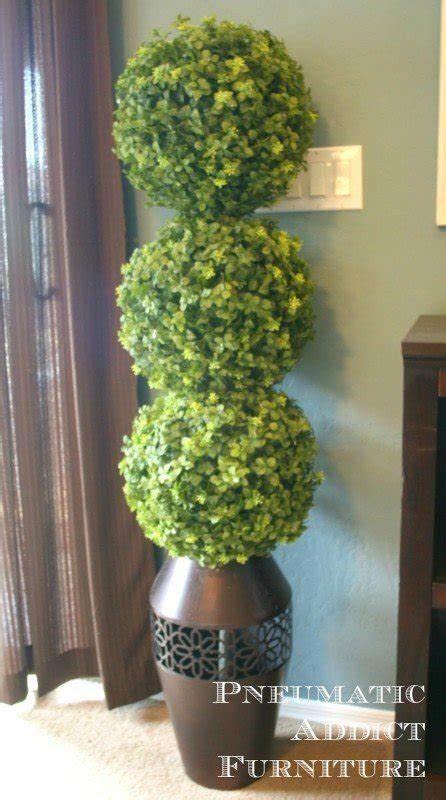 boxwood topiary trees foter