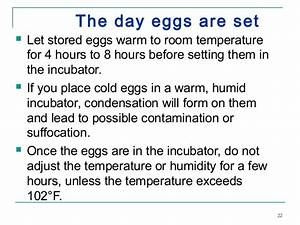 24 Egg Incubator Operating Instructions
