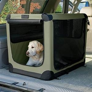 Folding nylon travel dog crate feels like home anywhere for Folding dog kennel travel