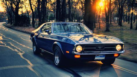 Mustang Full Hd Wallpaper High Quality
