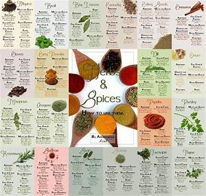 How To Use Herbs And Spices Herbs Spices Spices Herbs