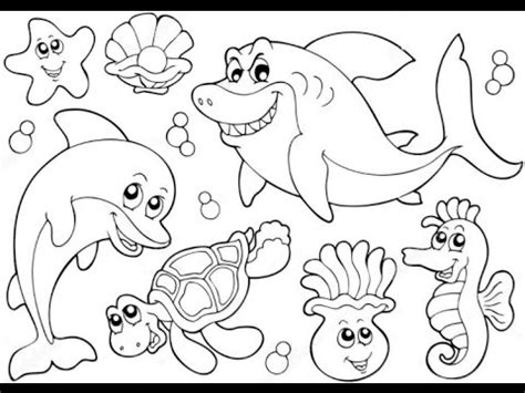 kids learn ocean animals   draw sea animals learn