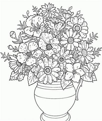 Pintar Flores Colorear